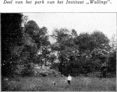 deel_van_het_park