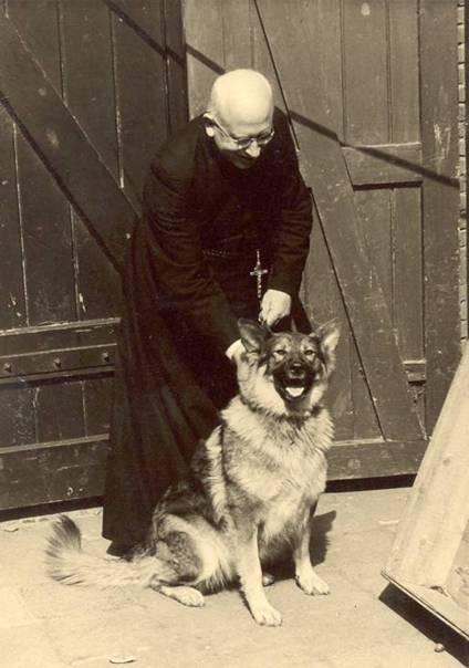 Pater polder, zomertrimester 1954
