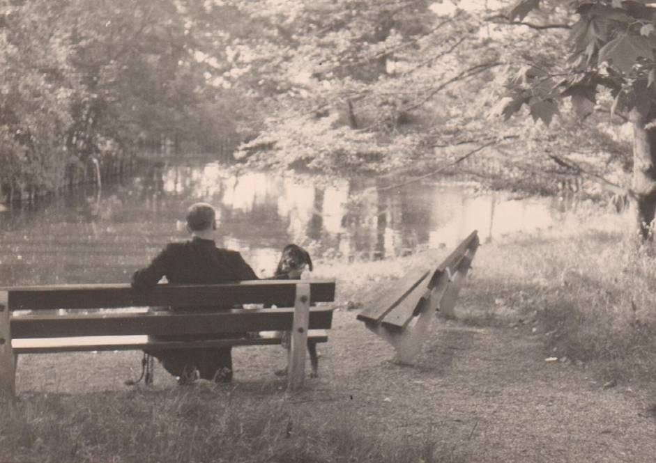 Fraai zitplekje bij de vijver met de hond van Bijsterveld